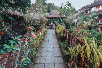 Walk way from the main road to the restaurant